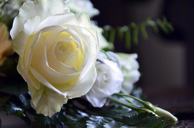 super tips for planning your wedding - Super Tips For Planning Your Wedding - wedding