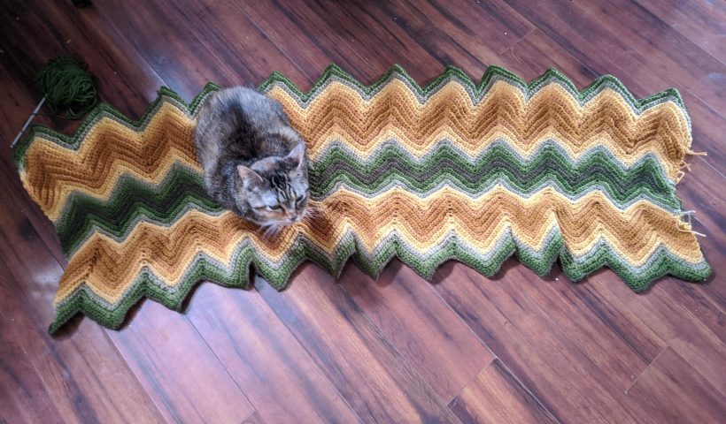 6pp8w0ek40t41 820x480 - I taught myself how to crochet so I could finish the blanket my Grammy started before she passed. The middle part is where I started and clearly didn't have any idea how loose I should have been making my stitches haha oh well Fuzzy the cat likes it - hobbies, crafts