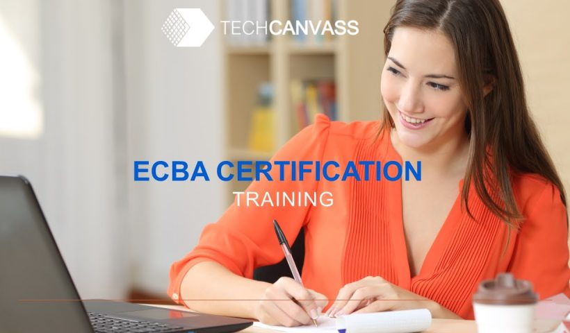 1589090967 maxresdefault 820x480 - Business Analyst Certification Training (ECBA) - Session I - Techcanvass - training, business