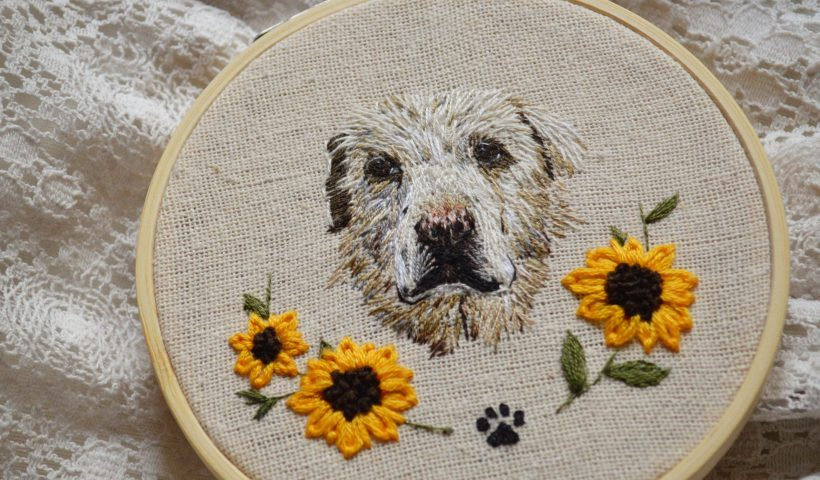 4jazv6q6g4y41 820x480 - My first dog portrait and I'm pleasantly surprised by how it turned out! - hobbies, crafts