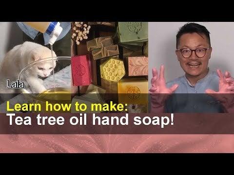 GwlnAG6rG4h37g13JlRuEu5C uj zyZiPCjVZhdcIos - Make this tea tree oil hand soap!   Taiwan Insider on RTI - hobbies, crafts