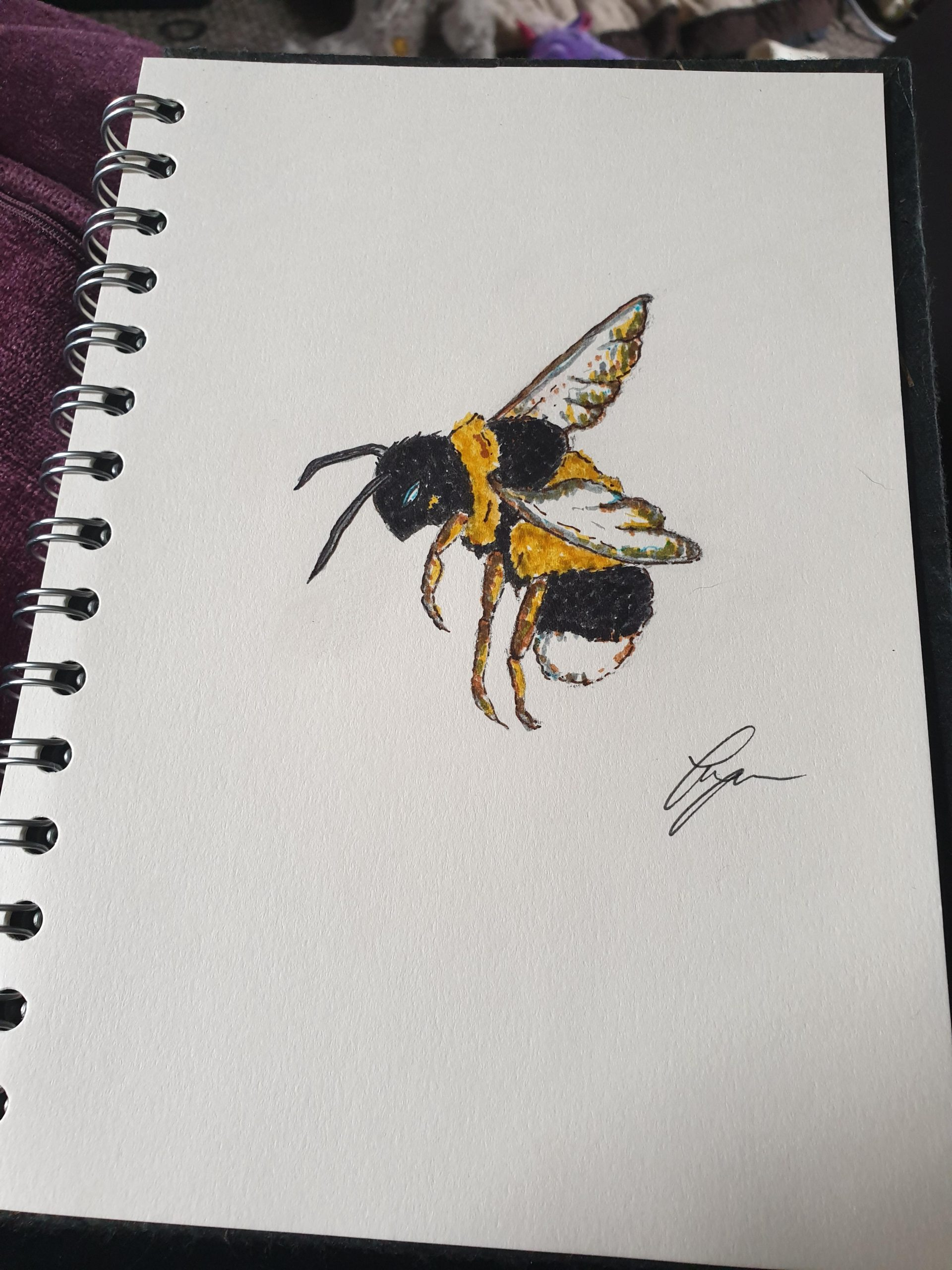 a0hwqpj7g7y41 scaled - My first go at a bumblebee - hobbies, crafts