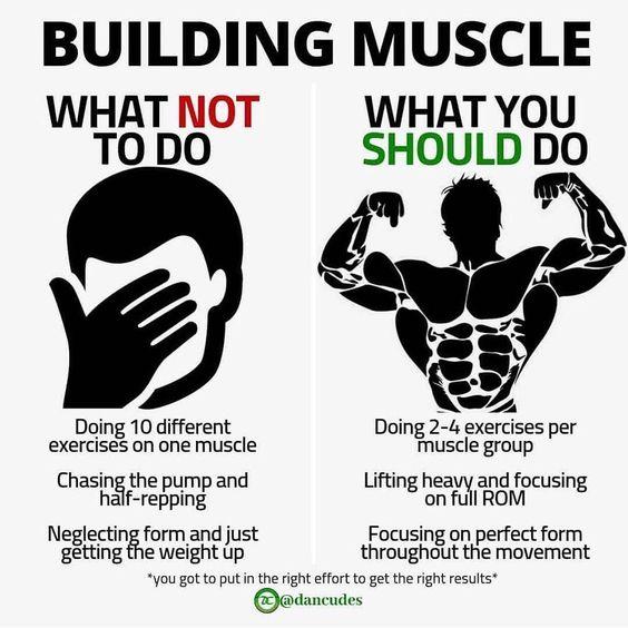 m619p6l4nr751 - Building Muscle - home, hobbies