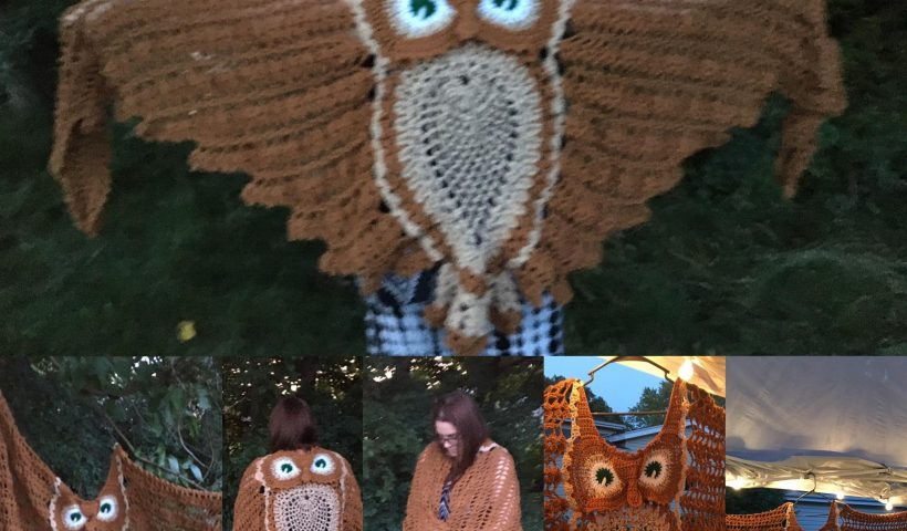 8mexq3jnlh951 820x480 - HOTH and on its way to its new home. [Crochet Owl Shawl] - hobbies, crafts