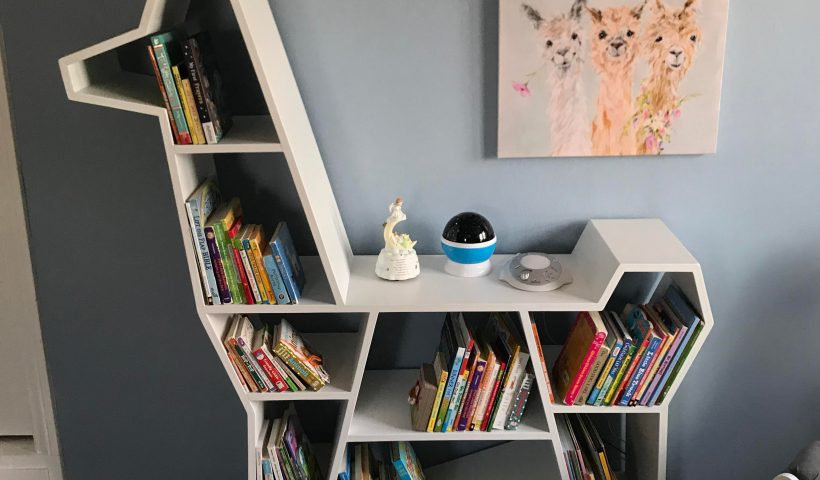 dzmotqovy4951 820x480 - Made a couple quirky bookshelves for my kids. Lost my job recently and thinking about selling custom bookshelves. What is a reasonable price to ask? All hand made, quality materials. Built to last! - hobbies, crafts