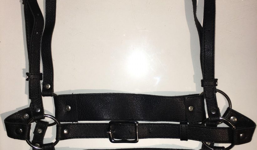 eaadgj2gmd751 820x480 - I made this harness - hobbies, crafts