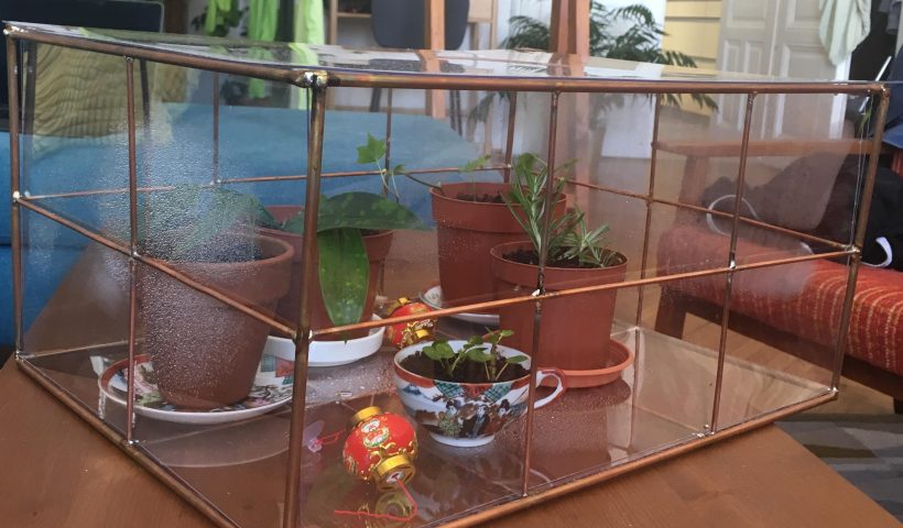 og0nf8aoe9751 820x480 - soldered a mini copper glasshouse for my baby plants :) - hobbies, crafts