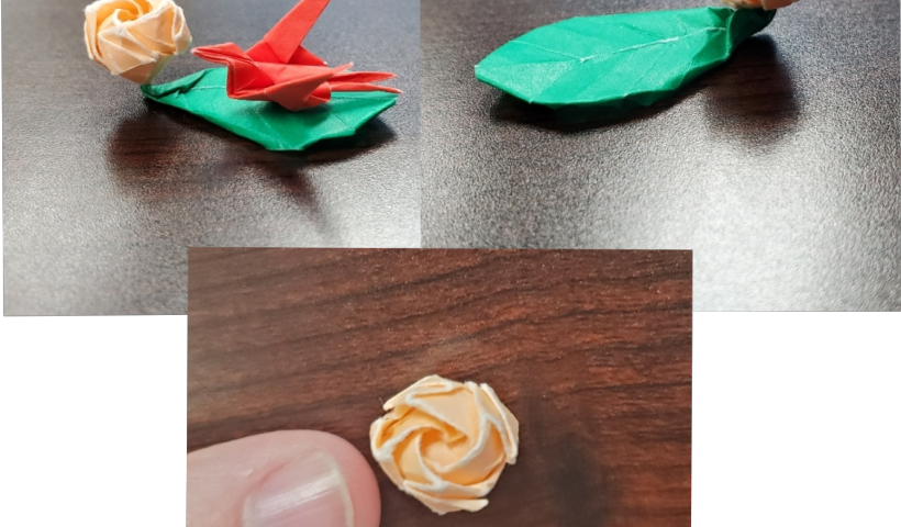 q92kbxeyya751 820x480 - I made this little kawasaki's rose and im proud of it - hobbies, crafts