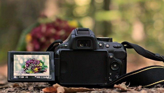 want good ideas about photography then check this out 1 - Want Good Ideas About Photography Then Check This Out! - photography