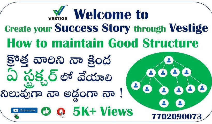 1599635558 maxresdefault 820x480 - Vestige Business Training Telugu How to maintain Good Structure, వెస్టిజ్ లో ఏ స్ట్రక్చర్ లో వేయాలి - training, business