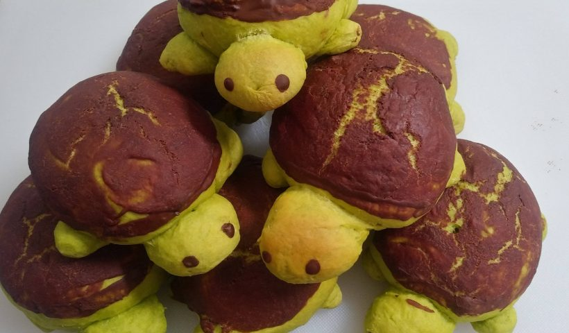 IbWWFRVThPLBMtxwVkQKnAwMhkZZrwybiyBameiEYp8 820x480 - Does baking count? I'm so proud of these sweet bun turtles! - hobbies, crafts