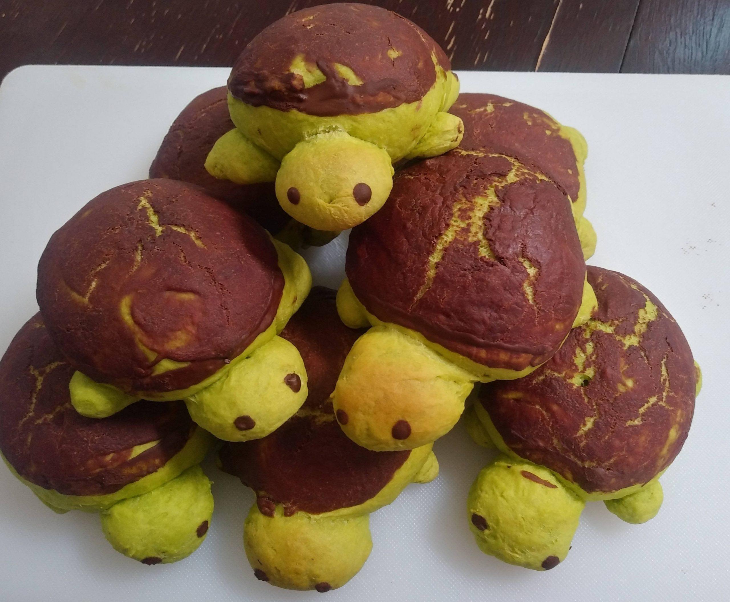 IbWWFRVThPLBMtxwVkQKnAwMhkZZrwybiyBameiEYp8 scaled - Does baking count? I'm so proud of these sweet bun turtles! - hobbies, crafts