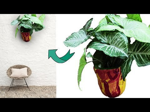 jQnPTW4orKLL31pjFs 16M9MGrjyw28viUfYUXkqJQU - Make a beautiful wall hanging planter by white cement-homemade wall hang... - hobbies, crafts