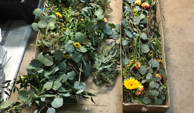 0s08l92tgwt51 820x480 - I have a ton of left over garland from an elopement. It's real and it's starting to dry out. What can I do with it? Zero crafting experience. - hobbies, crafts