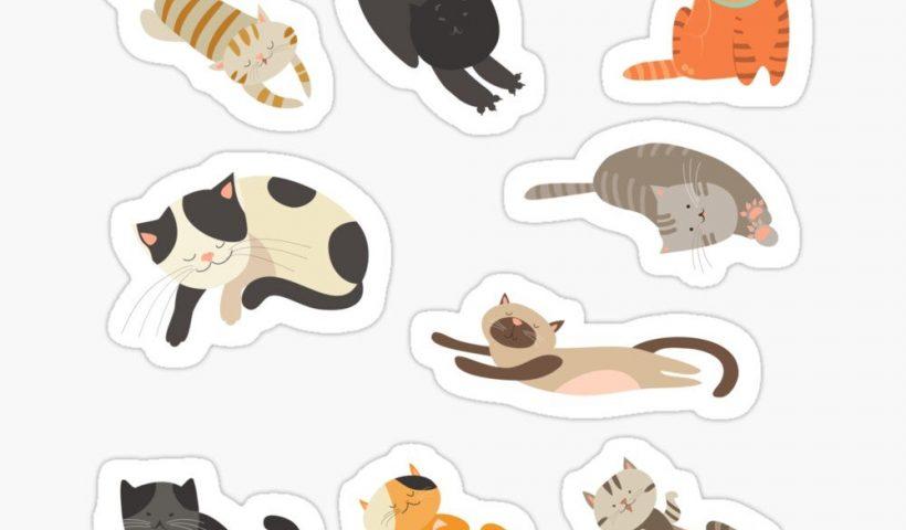 reax7cn3wtt51 820x480 - made those fresh stickers - hobbies, crafts