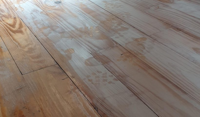 zhqrq1rqgzw51 820x480 - Painted wood varnish with a dirty (white paint) brush and didn't realise. How to fix this without sanding? - home, hobbies