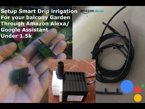 6Lfww4UDPCdZZ9Sh61fJ4sviENiz HldxP0RDg6WFk0 - How to: water your plants automatically while you're on vacation - home, hobbies