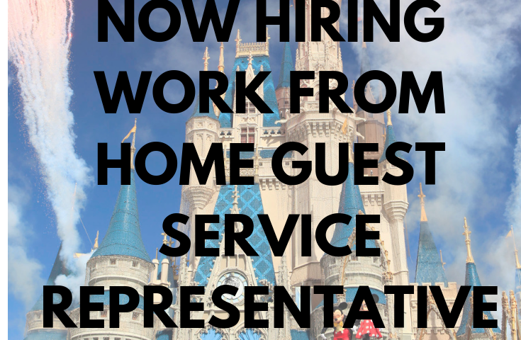 cb28646fc48fd6ae13971622d7d0a0da 735x480 - Disney Work From Home Job: Customer Service Positions Available! - work-from-home