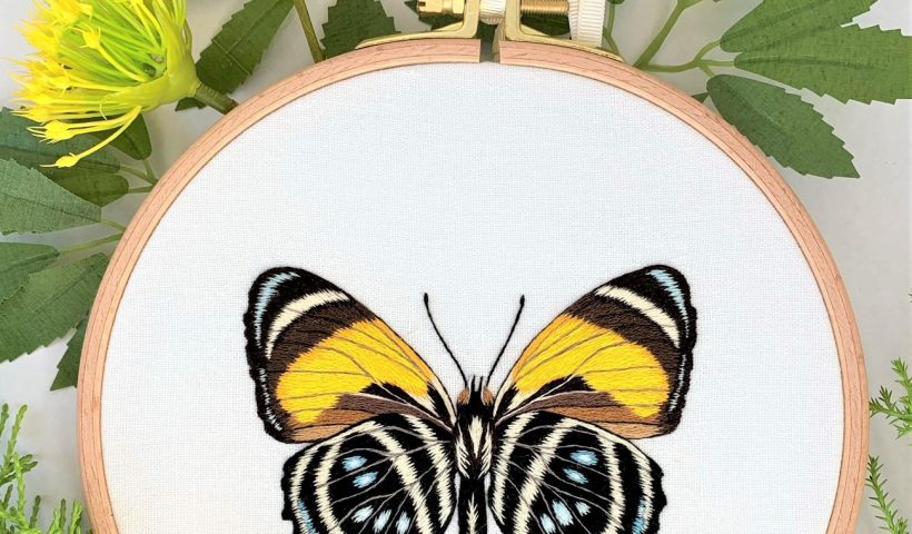 710q2hvqpog61 820x480 - This is Callicore Lyca hoop embroidery art. This butterfly is one of the most stunning species because of it`s distinctive and graphic patterns on the wings. For this artwork I`ve used 14 colours. - hobbies, crafts