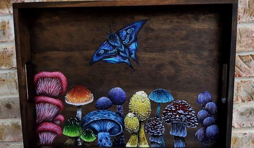 zb9qmr1vdij61 820x480 - A Colorful Mushroom Tray I painted! - hobbies, crafts