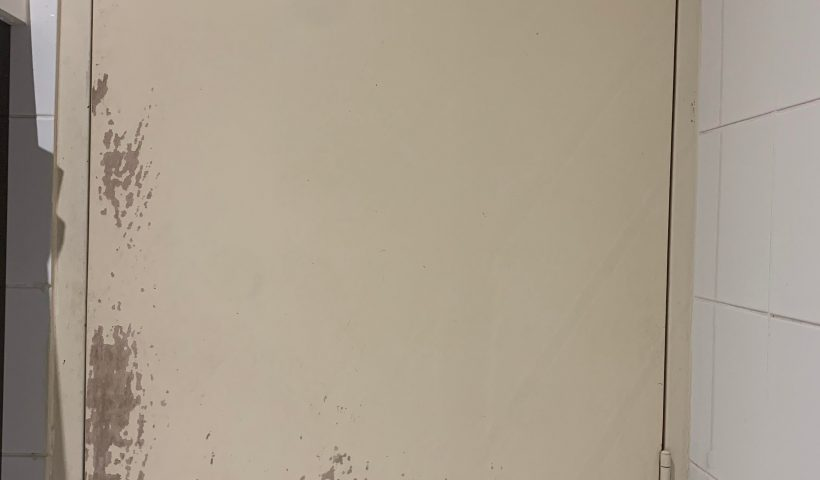v4yvrea6i1f61 820x480 - [QUESTION] How to paint this door? I'm ending my lease and will need to repair these scratches from when my dog was a pup. - home, hobbies