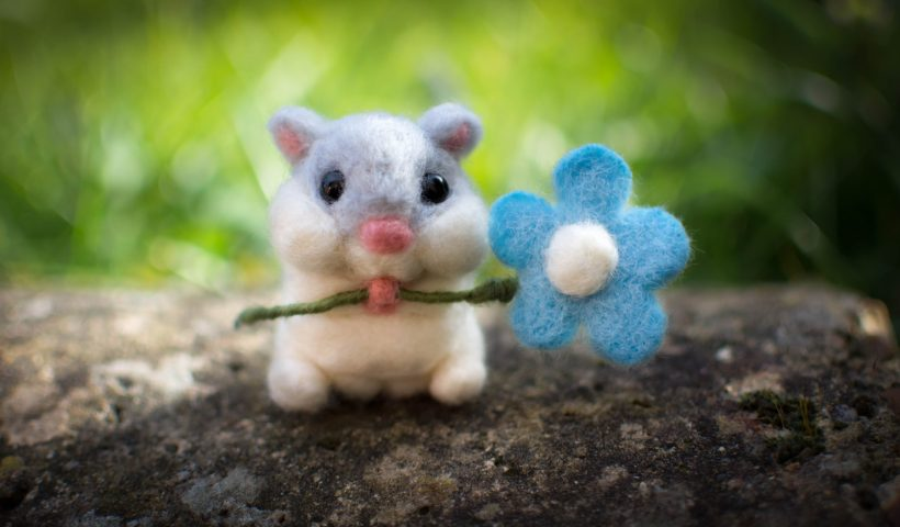 ycQxpRfa6FSne3LwEsoVSKQfcenrg6  vjoZXiHF6a8 820x480 - I made a little hamster holding a flower - hobbies, crafts