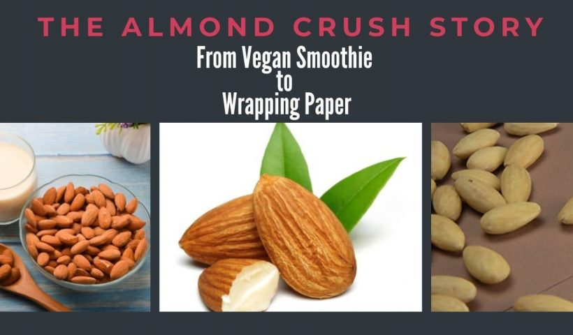 Copy of Kiwi Crush Paper How a Fuzzy Fruit Became a Notepad1 1 820x480 - From Tree Nut to Almond Crush Paper - uncategorized