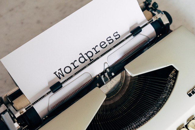 intriguing strategies in regards to wordpress you can learn - Intriguing Strategies In Regards To Wordpress You Can Learn - software